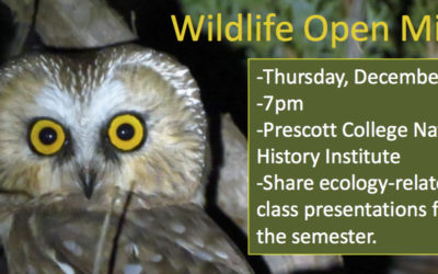 Wildlife Open Mic